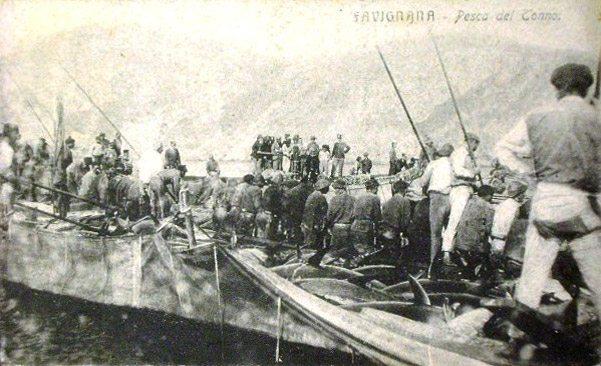 pesca-del-tonno-favignana-1918-mattanza